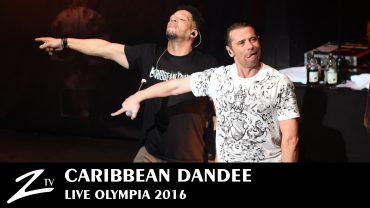 Caribbean Dandee