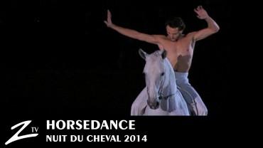 Nuit du Cheval 2014