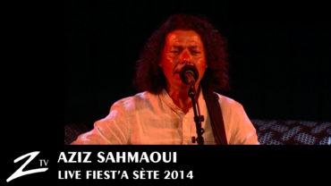 Aziz Sahmaoui – Fiest'A Sète 2014