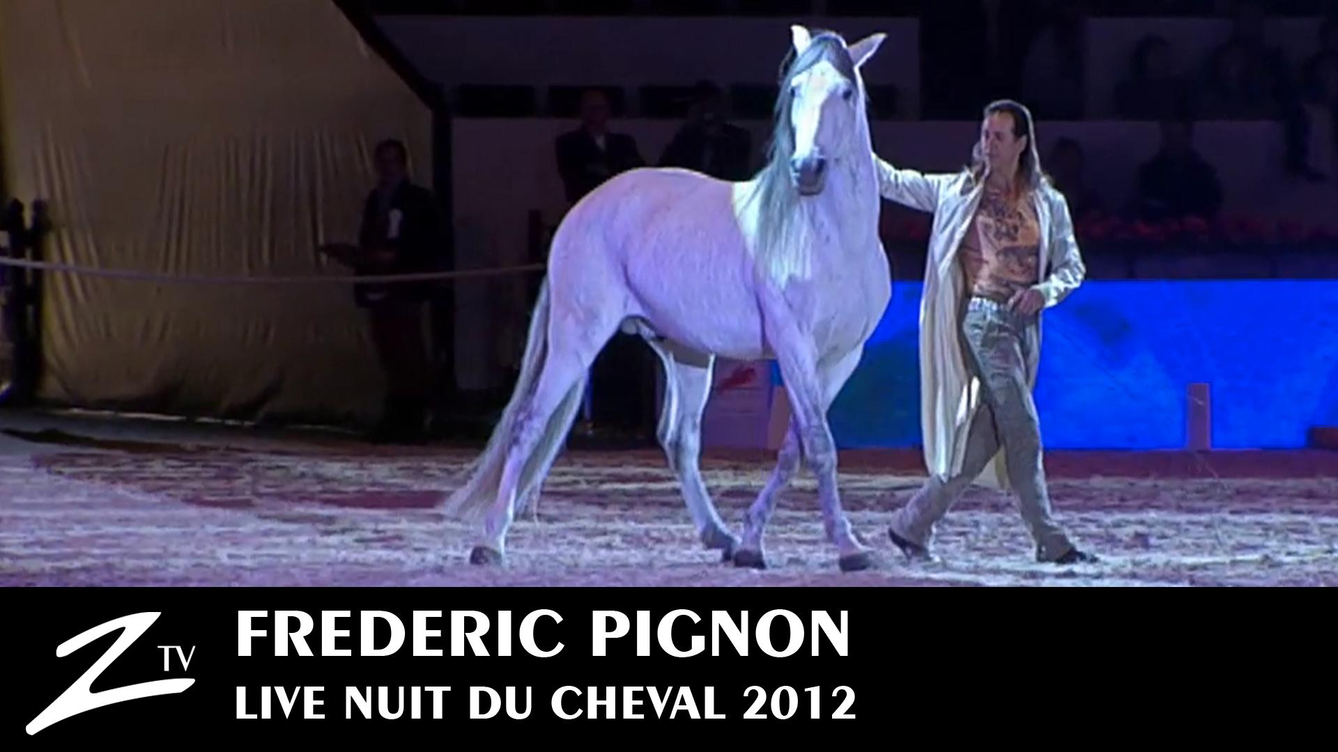 Nuit du cheval